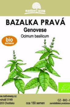 Nativeway bazalka genovese
