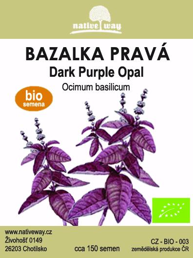 Nativeway bazalka purple seminka